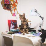 nalah gato cuadro ilustracion petlover