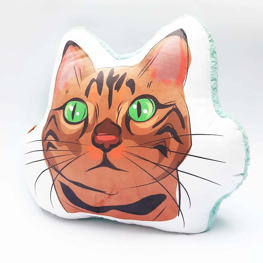Almohada Decorativa gato atigrado