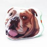 Almohada Decorativa bulldog ingles