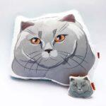 Pack Almohada Decorativa + llavero gato gris