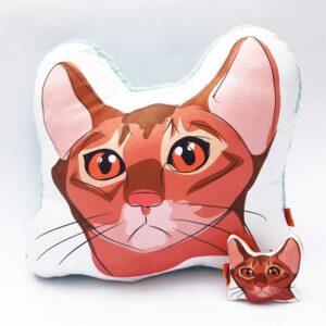 Pack Almohada Decorativa + llavero gato orejon anaranjado