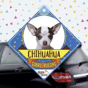 Colgante de auto de perro raza Chihuahua