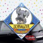 Colgante de auto de perro raza Schnauzer