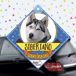 Colgante de auto de perro raza Siberiano