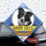 Colgante de auto de perro raza Border Collie