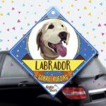 Colgante de auto de perro raza labrador