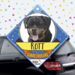 Colgante de auto de perro raza Rottweiler