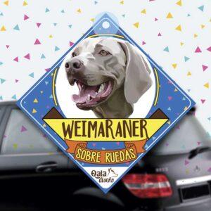 Colgante de auto de perro raza Weimaraner