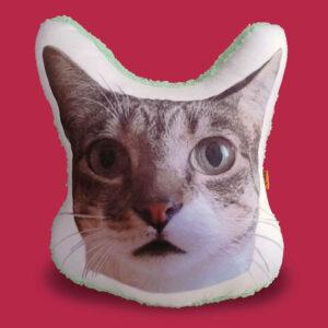 Almohada Decorativa personalizada con foto